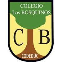 COLEGIO LOS BOSQUINOS